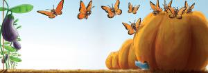 illustration-youth-butterflies-pumpkin-mouse-house-champ-aux-mille-fleurs-citrouille-papillons-souris-jeremy-parigi